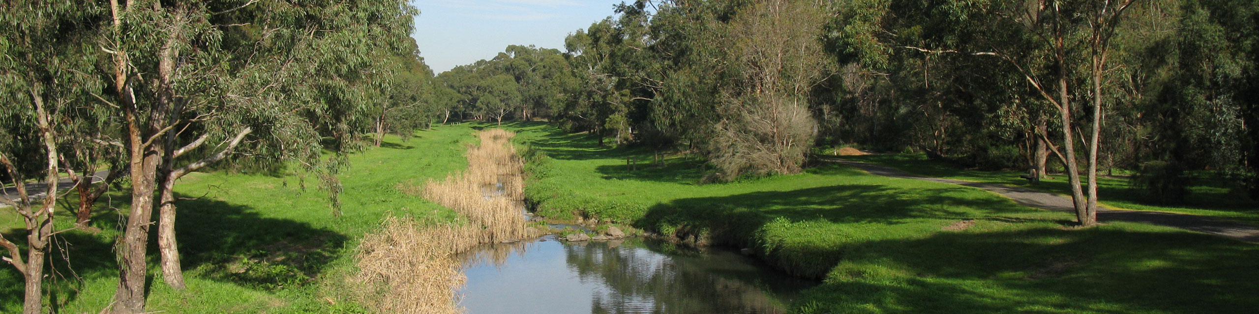 Dandenong Creek